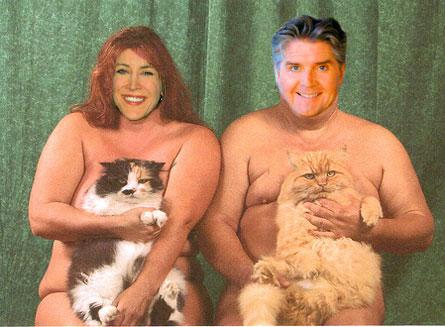 stephcats