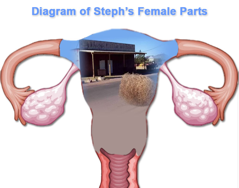 stephfemaleparts