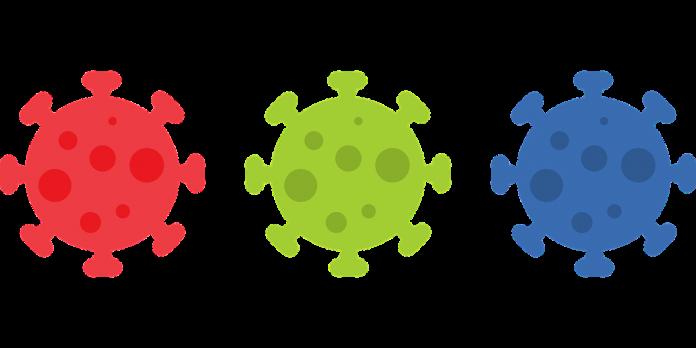 coronavirus covid