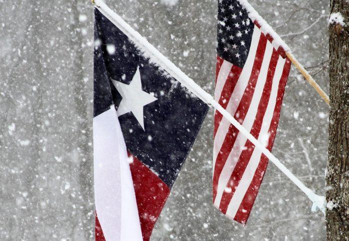 Texas Snow Flag